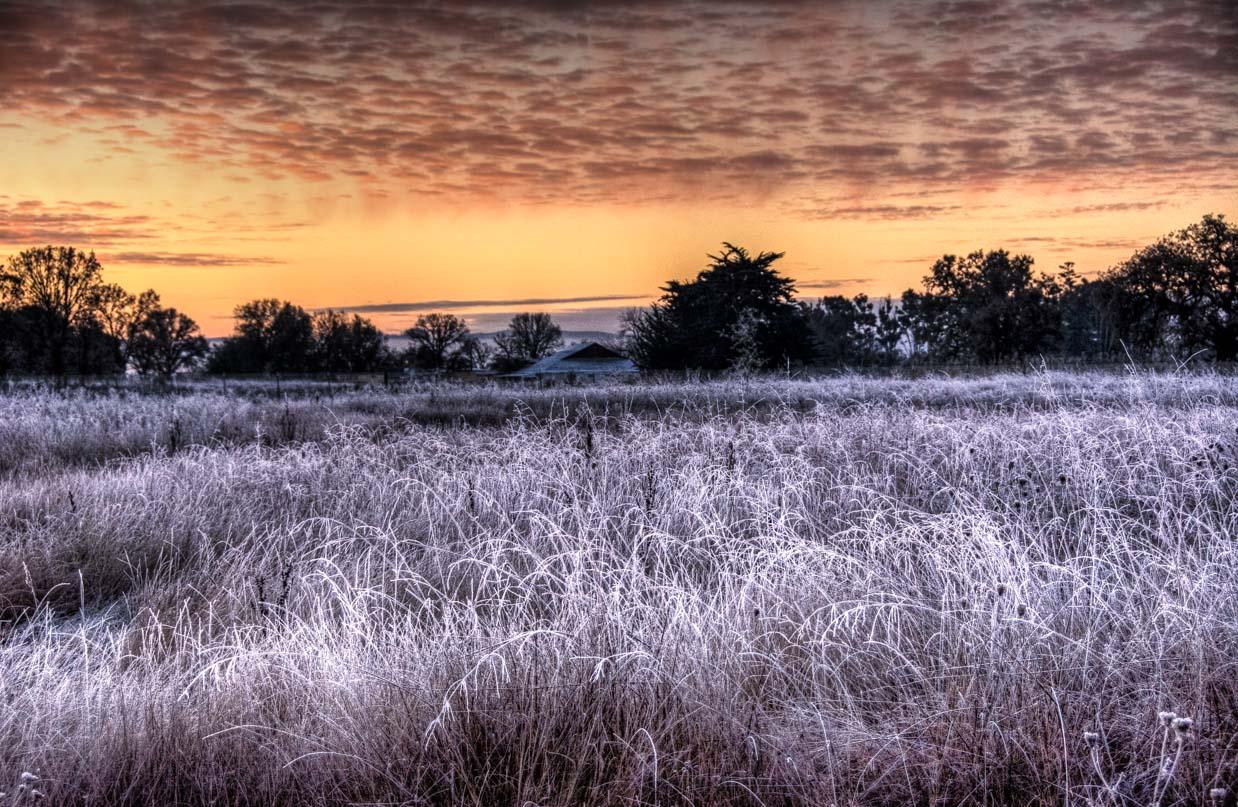 frosty-winter-sunrise-1