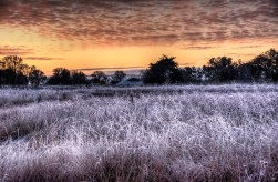 frosty-winter-sunrise-1