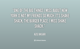quote-aziz-ansari-one-of-the-big-things-i-miss-60676