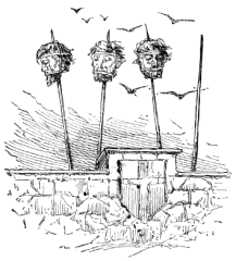 heads_on_spikes