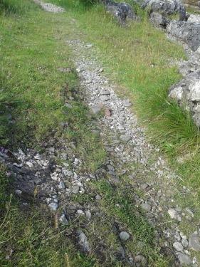 footprintsI