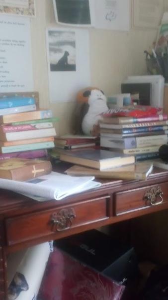 my study.jpg