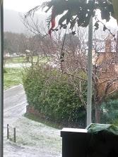 snow jan 19