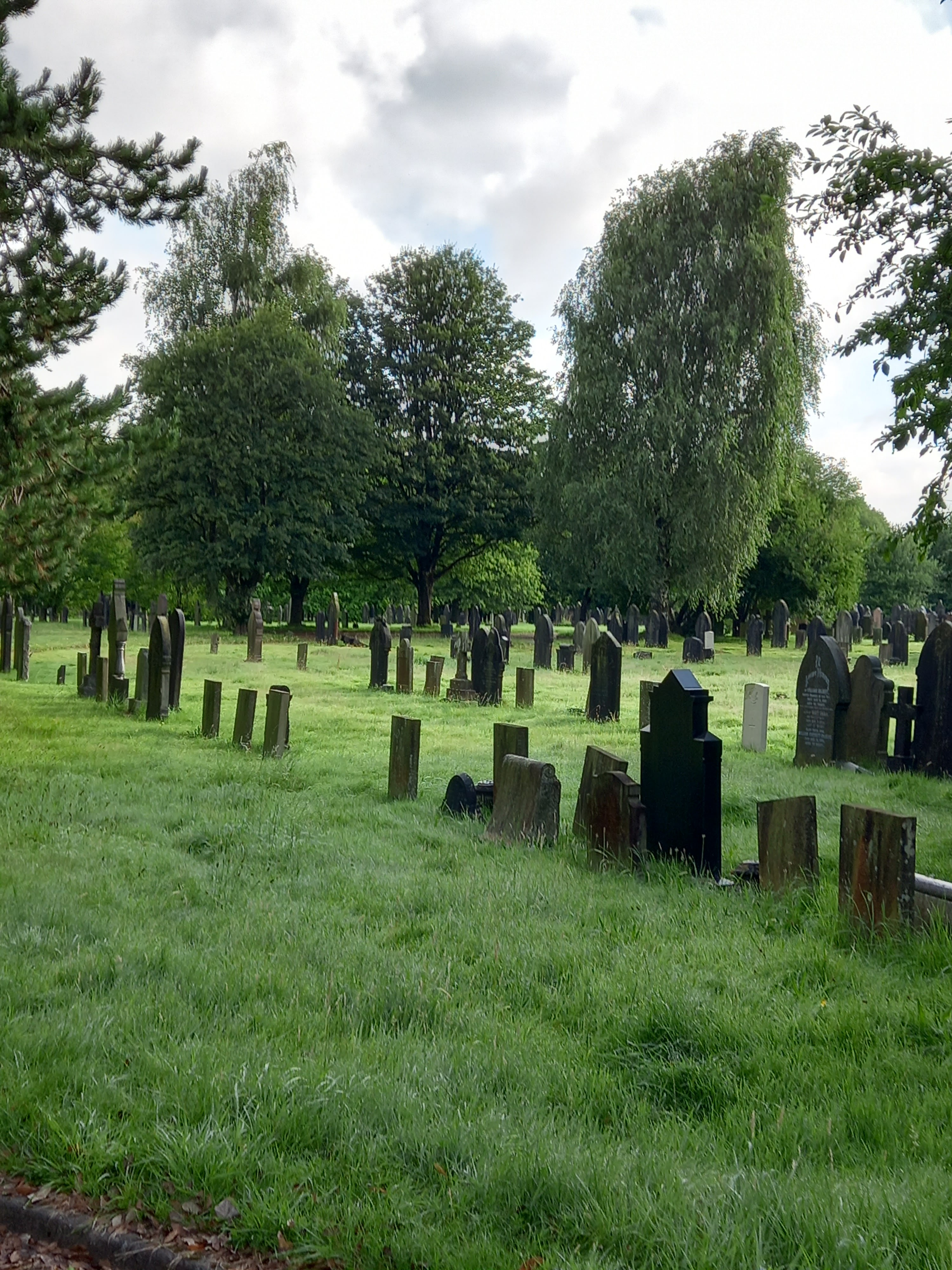 Photo of rows of Victorian grave stones taken by Diane Woodrow