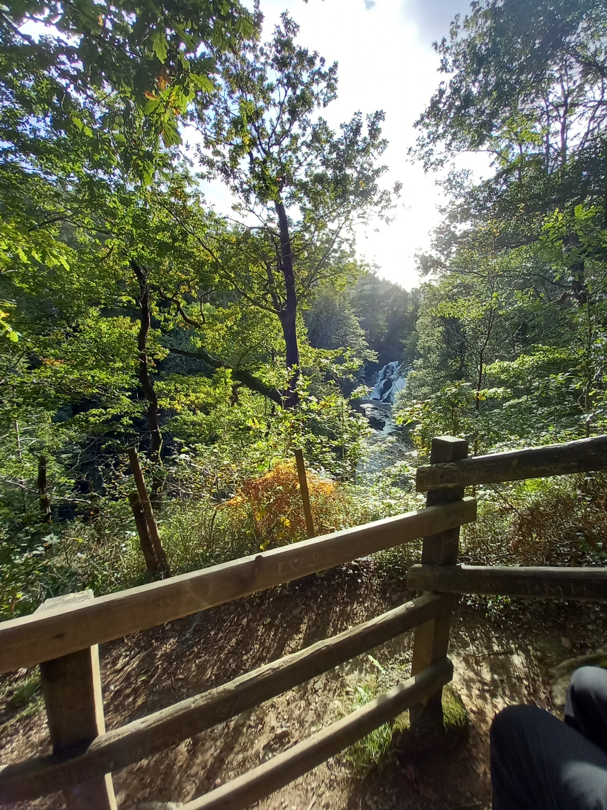 Photo looking across a wooden fence through trees that are just starting to turn autumnal towards a waterfall. Taken by Diane Woodrow